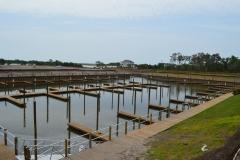 Floating Docks Gallery 5